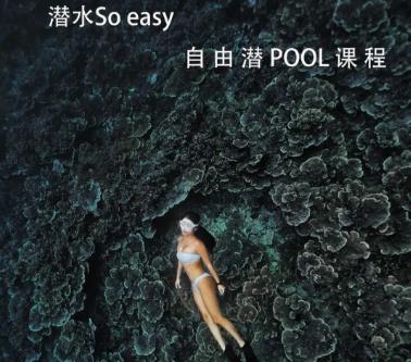 自由潜pool课程